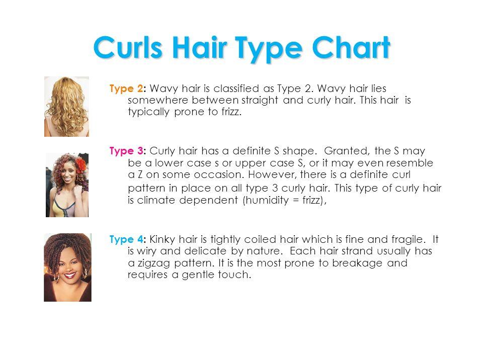 Curls Hair Type Chart