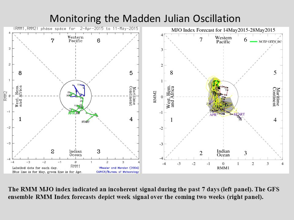 Monitoring the Madden Julian Oscillation