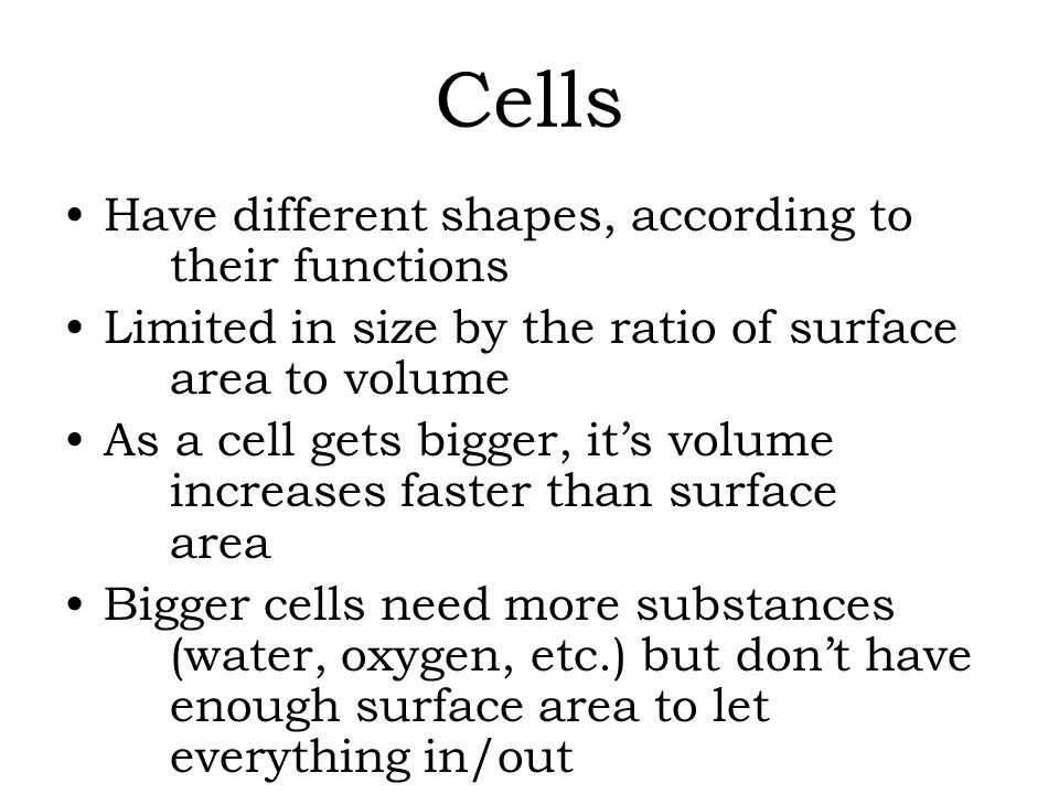 how are the shapes of cells related to their function The membranes of different types of cells are involved in many different functions 2013 10 b there are  the importance of shapes fitting together in cells and organisms 2012 10 b  made relevant to the title writing about.