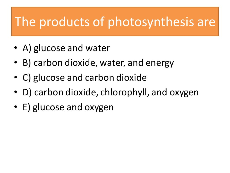 products of photsynthesis Environmental scientists recognize that the fundamental source of energy for most life on earth is the sun through photosynthesis, plants capture the.