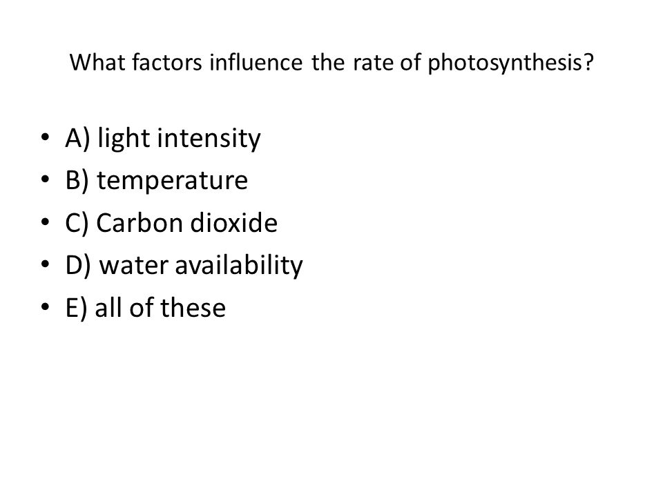 Photosynthesis Review.
