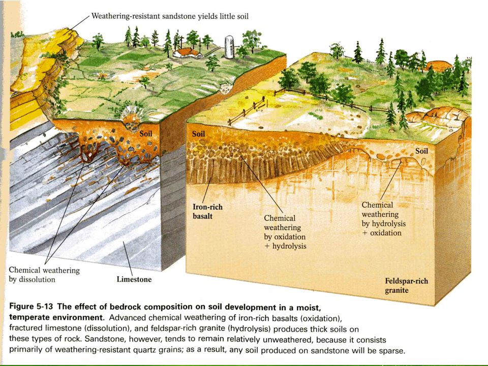 Agriscience and technology i introduction to soil science for Soil formation