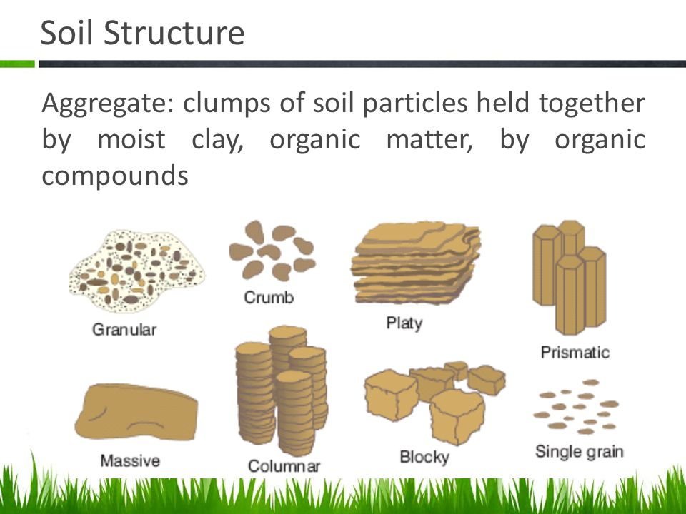 Agriscience And Technology I Introduction To Soil Science