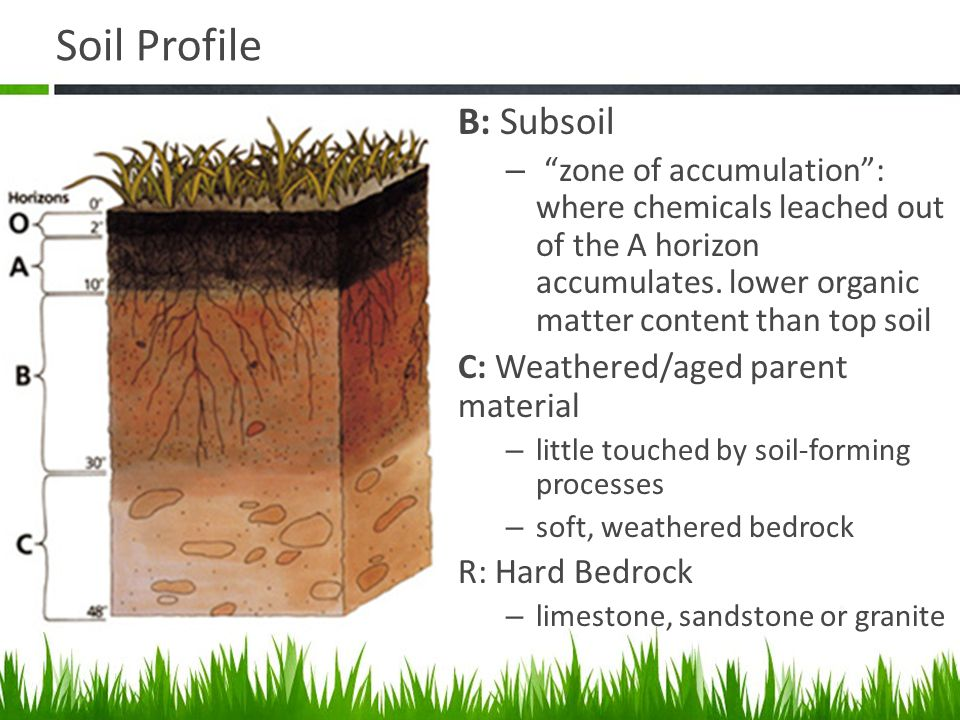 Agriscience and technology i introduction to soil science for Mineral soil vs organic soil