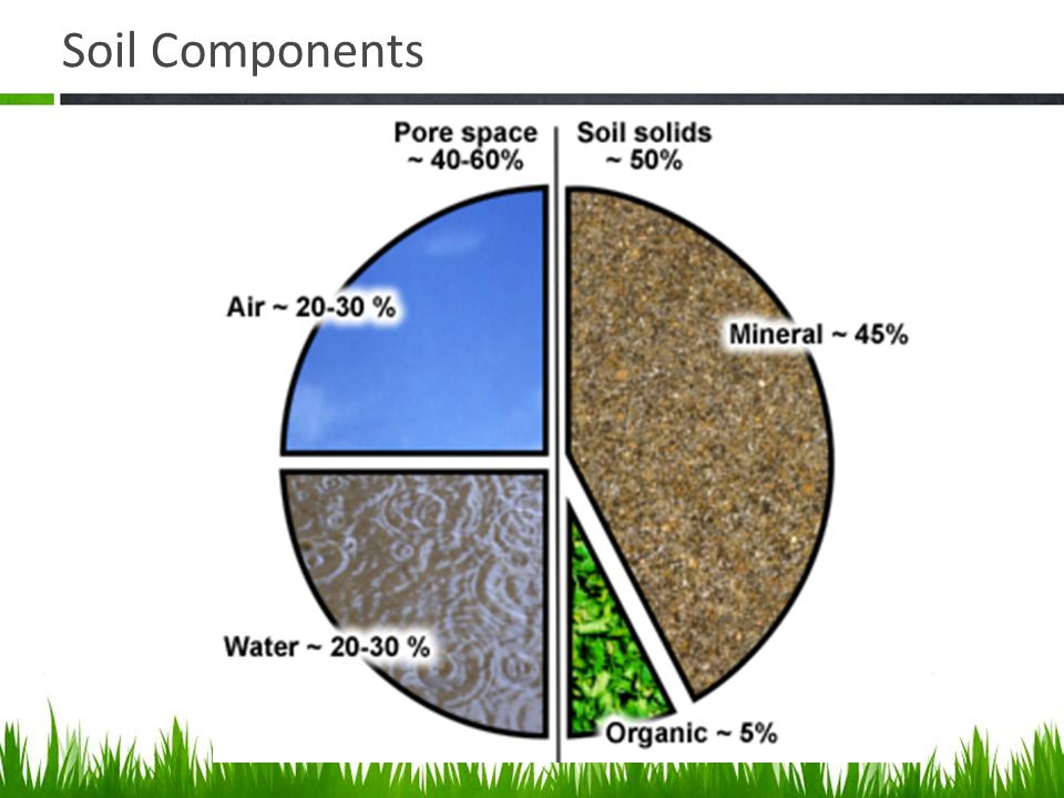 Agriscience and technology i introduction to soil science for What is soil composed of