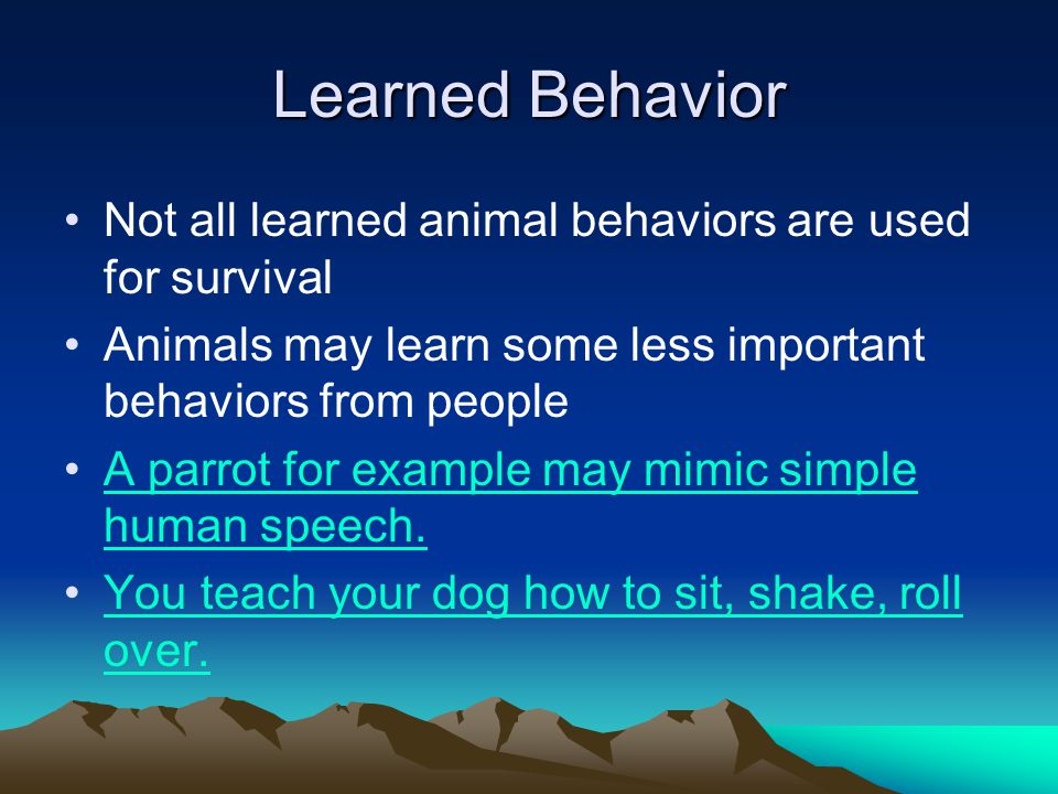 human behaviour is learnt not instinctive According to this theory, human aggression is an instinctive drive, related to the person and not the situation, and therefore an unavoidable part of human life (glassman, 2004) freud believed that all humans possess two basic drives from birth that contribute to personality development and behavior: the drive for aggression ( thenatos ) and .