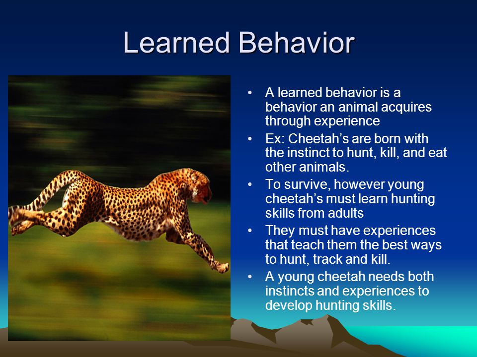 how to change learned behavior