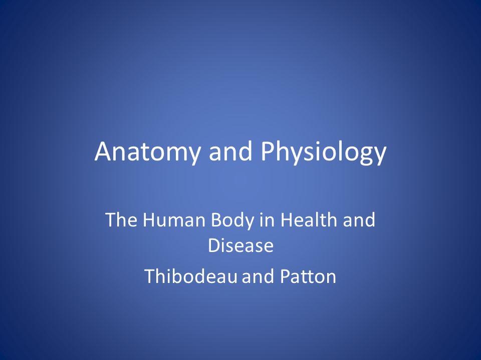 Charmant Anatomy And Physiology Thibodeau Ideen - Menschliche ...