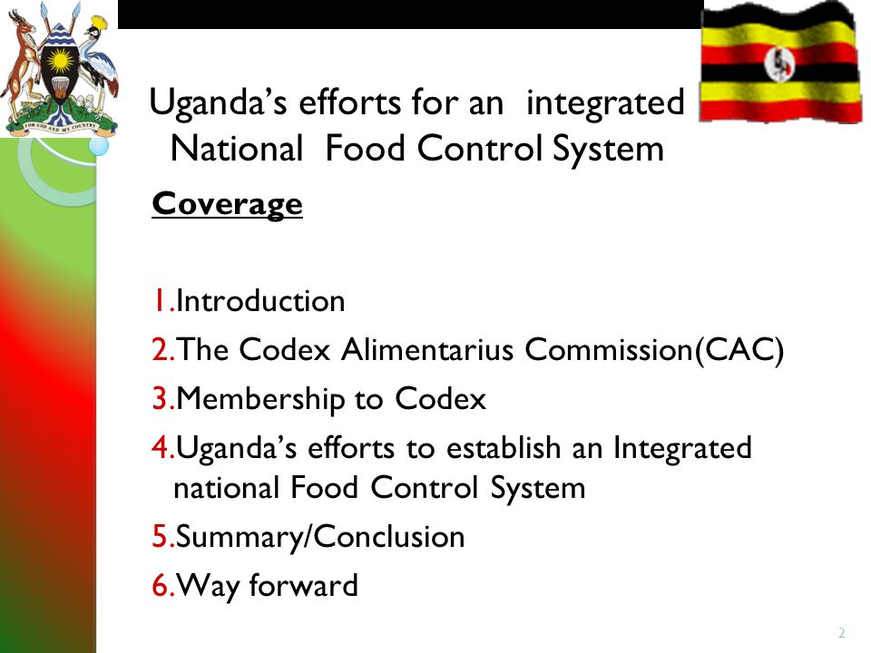 conclusion for national integration