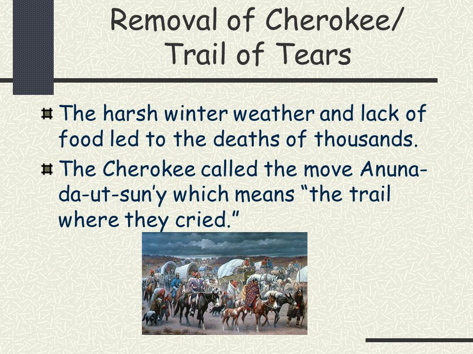 a study on cherokee removal in the united states Trail of tears teacher resources  of indian removal policies in the united states during the 1930s  to research the removal of cherokee indians from their.