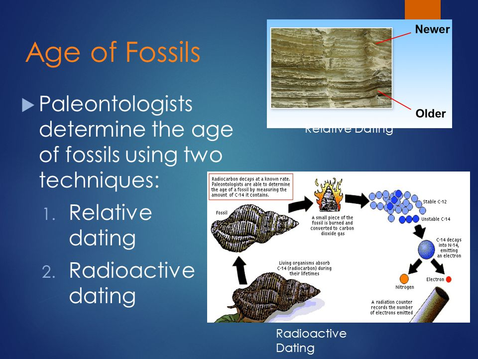 What are two major methods of dating artifacts or fossils