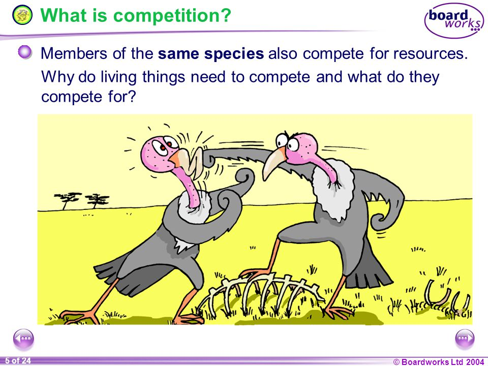 KS4 Biology Competition. - ppt video online download