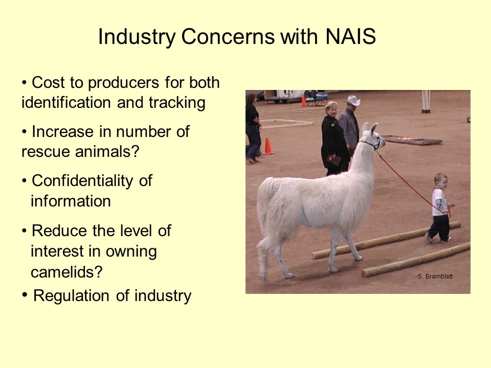 Industry Concerns with NAIS