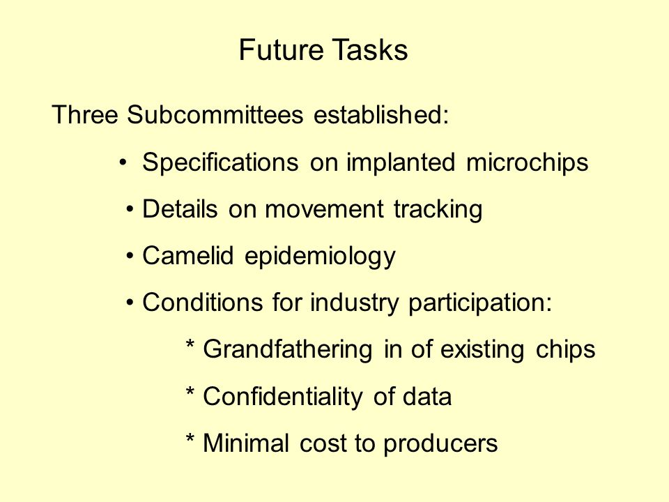 Future Tasks Three Subcommittees established: