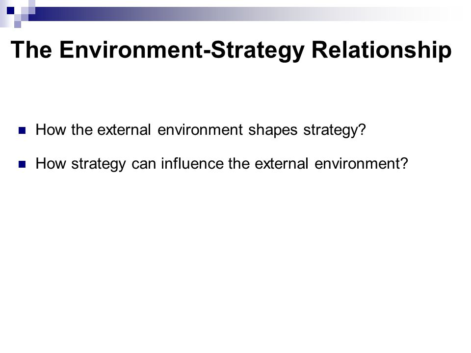 The Environment-Strategy Relationship