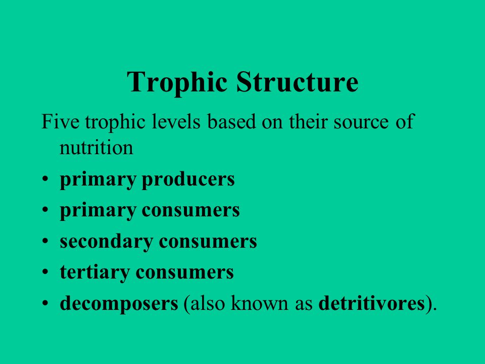 Trophic Structure Five trophic levels based on their source of nutrition. primary producers. primary consumers.