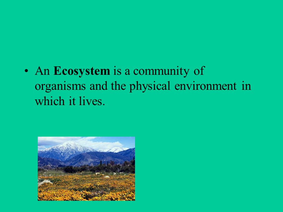 An Ecosystem is a community of organisms and the physical environment in which it lives.