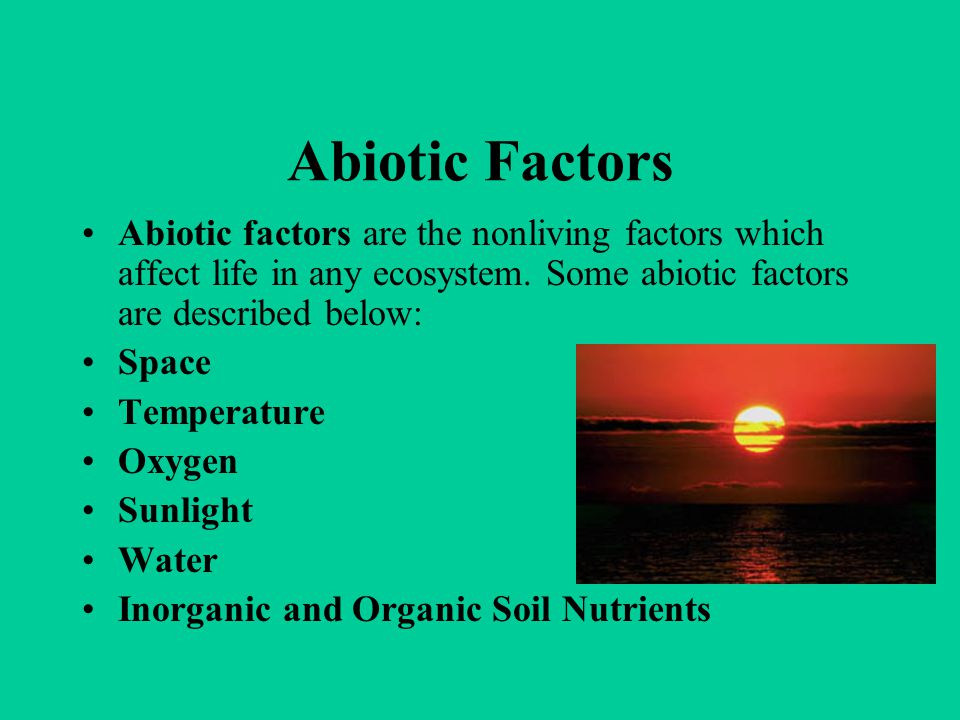 Abiotic Factors Abiotic factors are the nonliving factors which affect life in any ecosystem. Some abiotic factors are described below: