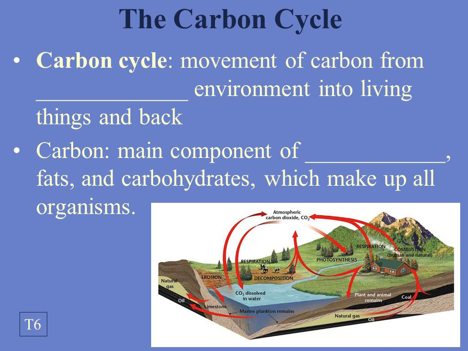 the carbon cycle the movement of carbon throughout the biosphere Carbon is continually moving among earth's lithosphere, hydrosphere, biosphere , and atmosphere in various forms: as carbon dioxide (co2) in the atmosphere, sugars or carbohydrates (cnh2non) in living organisms, and calcium carbonate ( caco3) in rocks and minerals, to name just a few the movement of carbon.