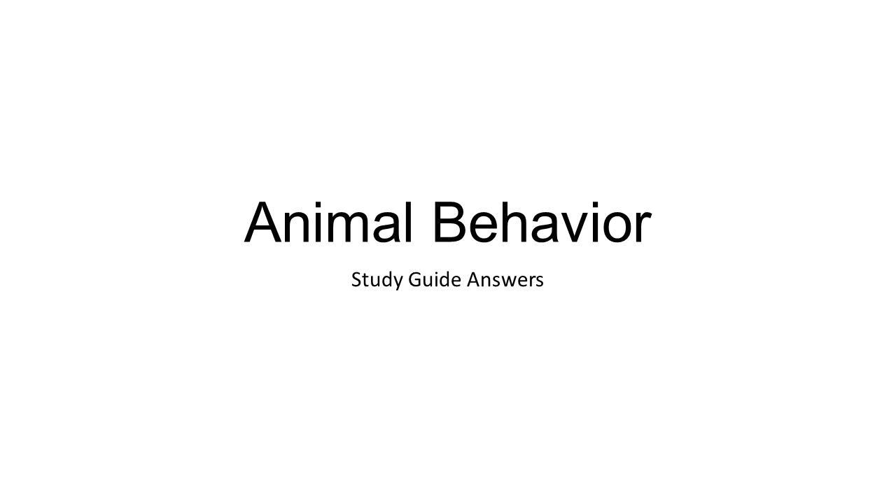 animal behavior study guide answers ppt video online download rh slideplayer com biological diversity animal behavior & endangered species study guide answers Ethology and Evolutionary Developmental Psychology