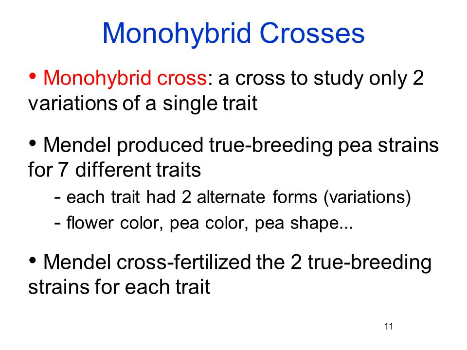 Monohybrid Crosses Monohybrid cross: a cross to study only 2 variations of a single trait.