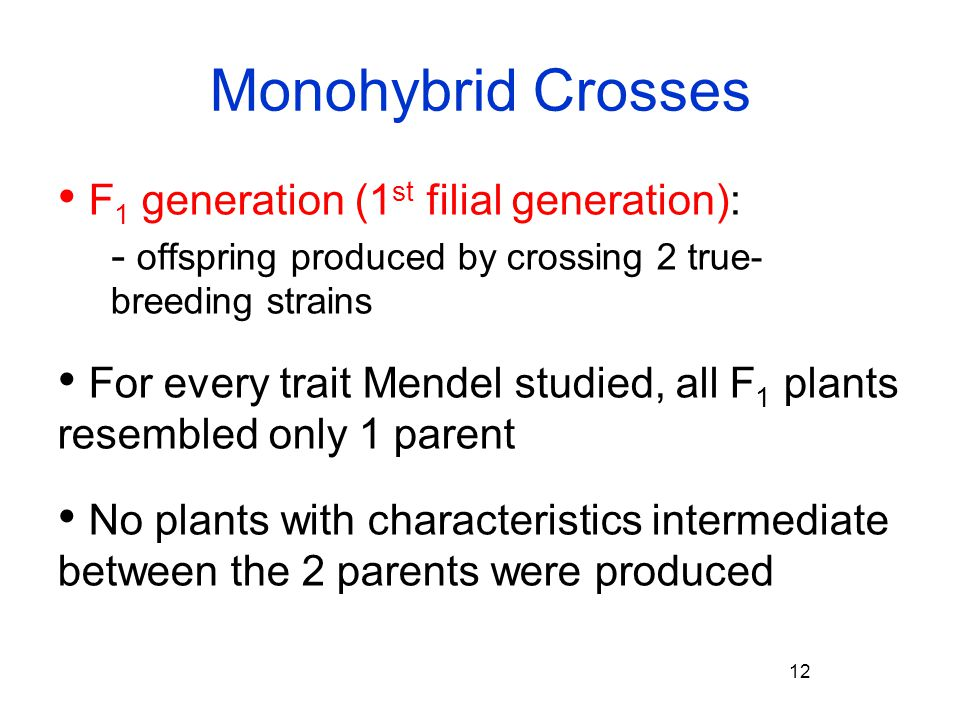 Monohybrid Crosses F1 generation (1st filial generation):