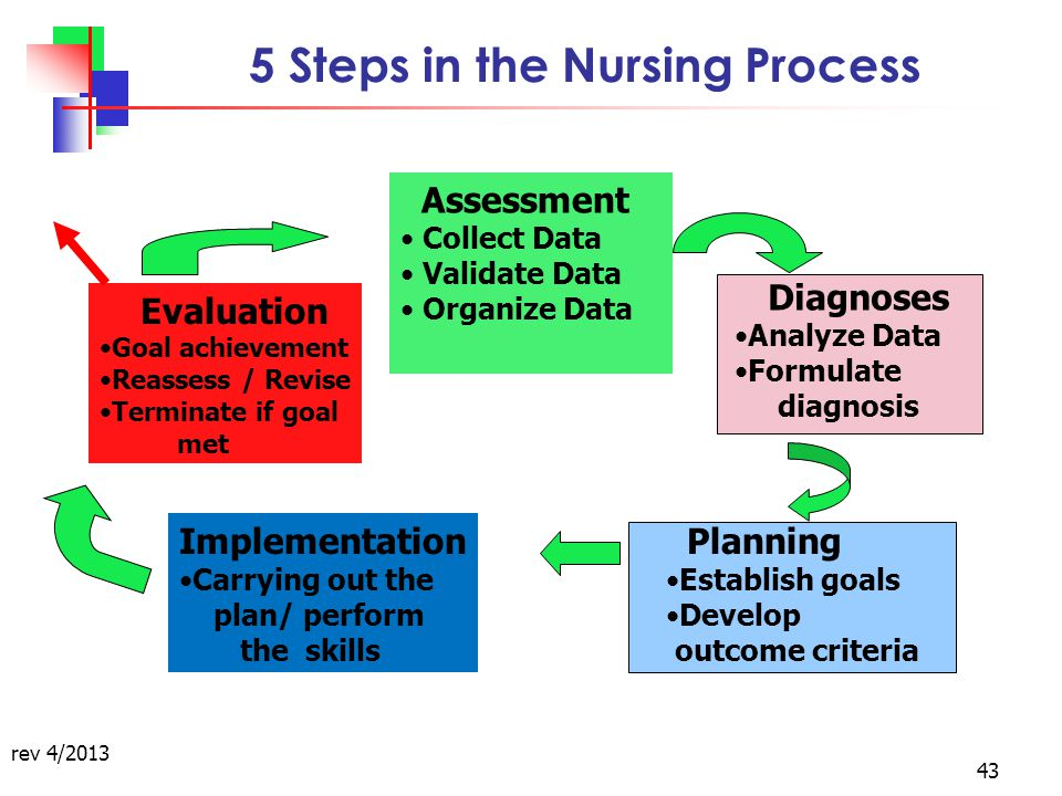 the nursing process steps skills and How to draw blood: drawing blood clinical nursing skills for rns learn some tips when drawing blood as a nurse, nursing student, or as a part of clinical skills as nurses enter the clinical setting, they will have to know how to draw blood as part of their clinical skills experiences.