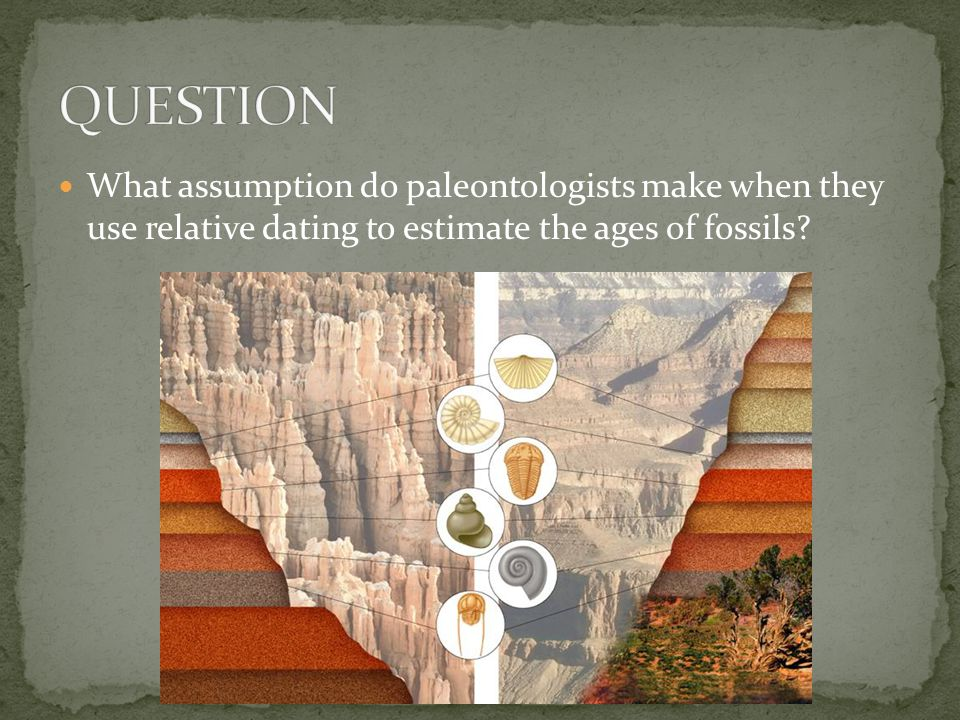 QUESTION What assumption do paleontologists make when they use relative dating to estimate the ages of fossils