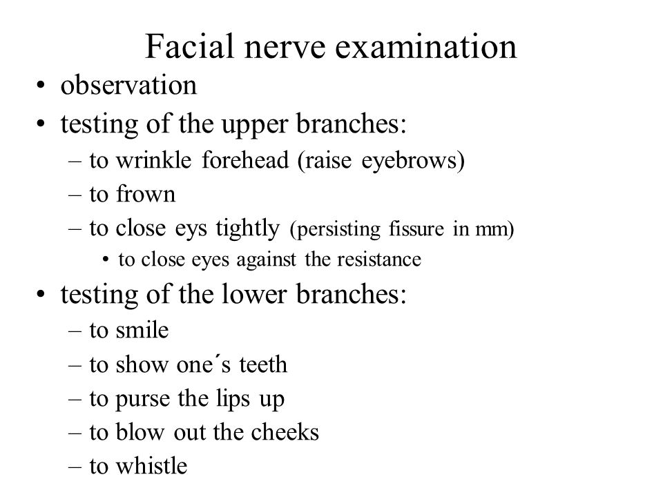 pediatrics cranial nerve examination essay Pediatrics practice questions adipose a physical examination reveals rebound tenderness and a the pediatric pain specialist should be consulted first to.