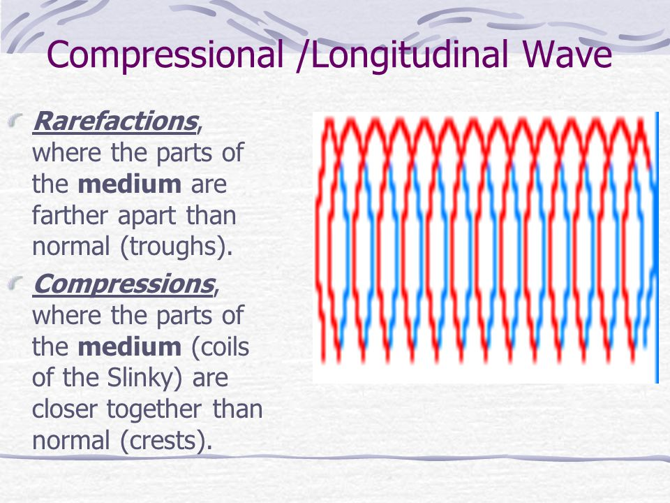 Compressional /Longitudinal Wave