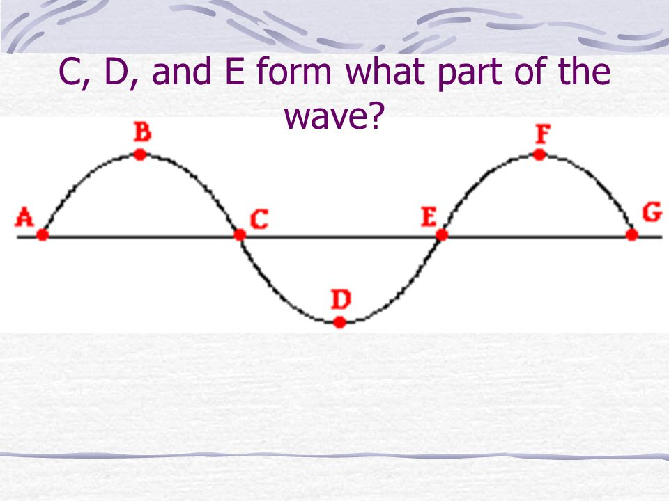 C, D, and E form what part of the wave