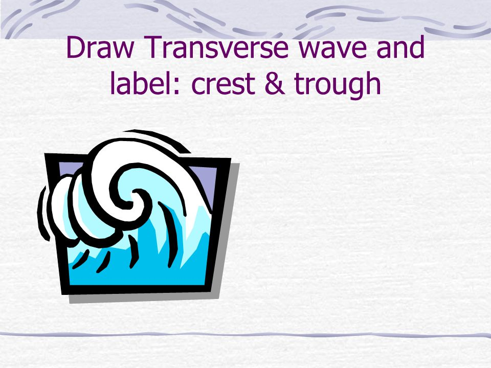 Draw Transverse wave and label: crest & trough
