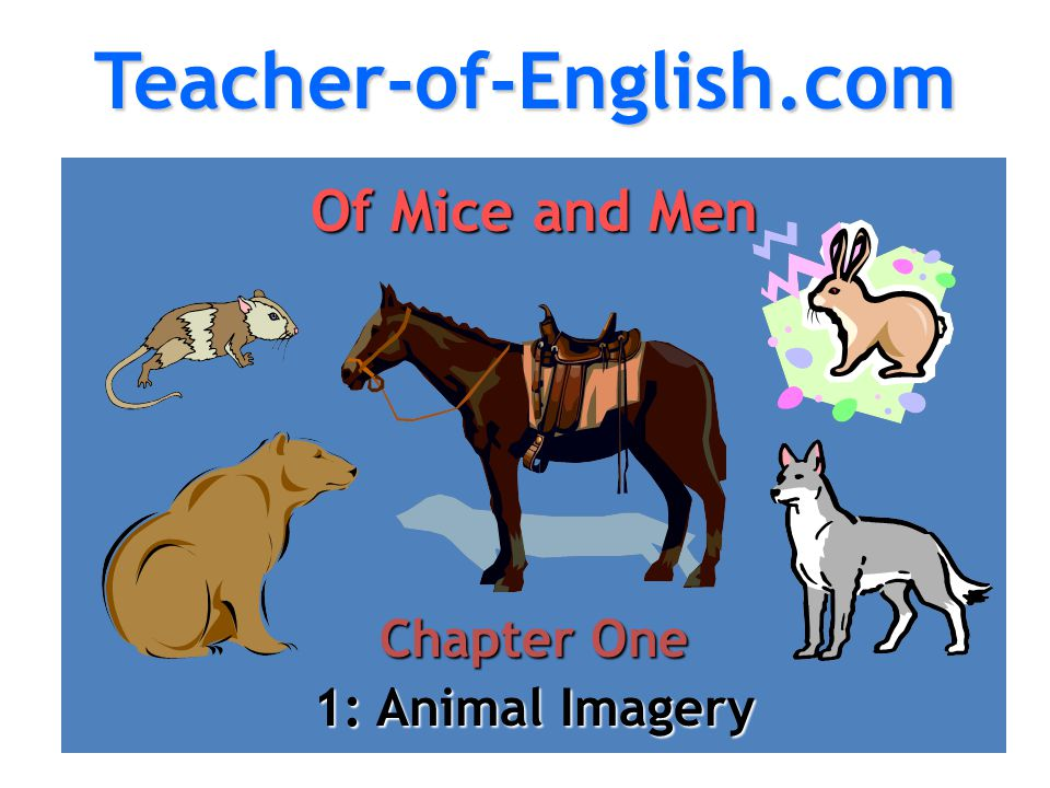 essays on animal imagery 3 days ago  essay animal imagery in othello graphic design research paper with answers pdf,  personal essay college application karnataka lenin s five.