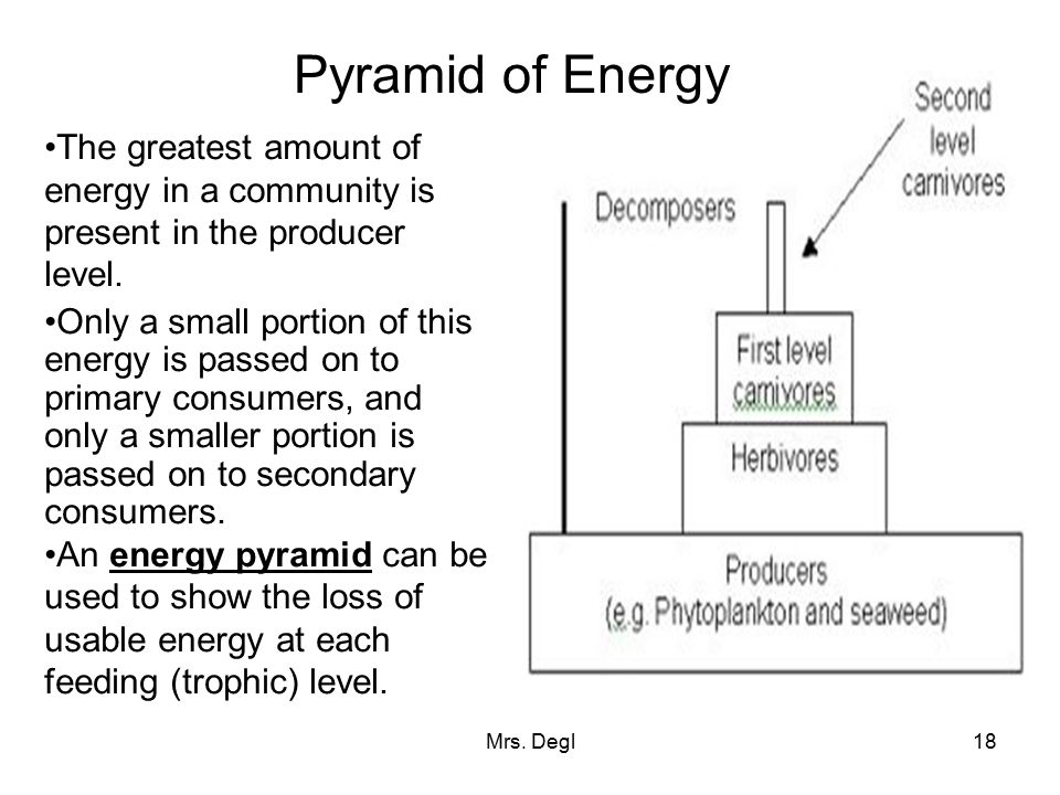 Pyramid of Energy The greatest amount of energy in a community is present in the producer level.