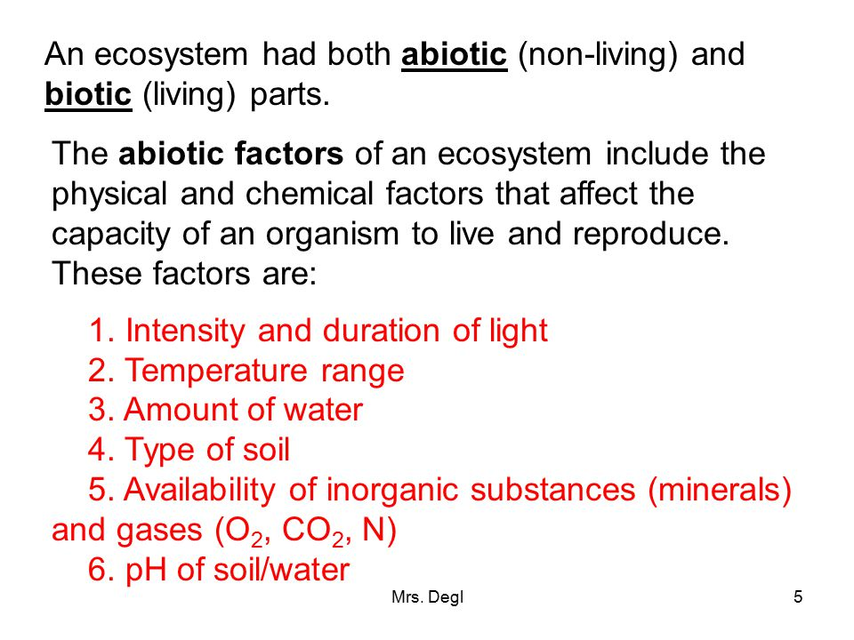 An ecosystem had both abiotic (non-living) and biotic (living) parts.