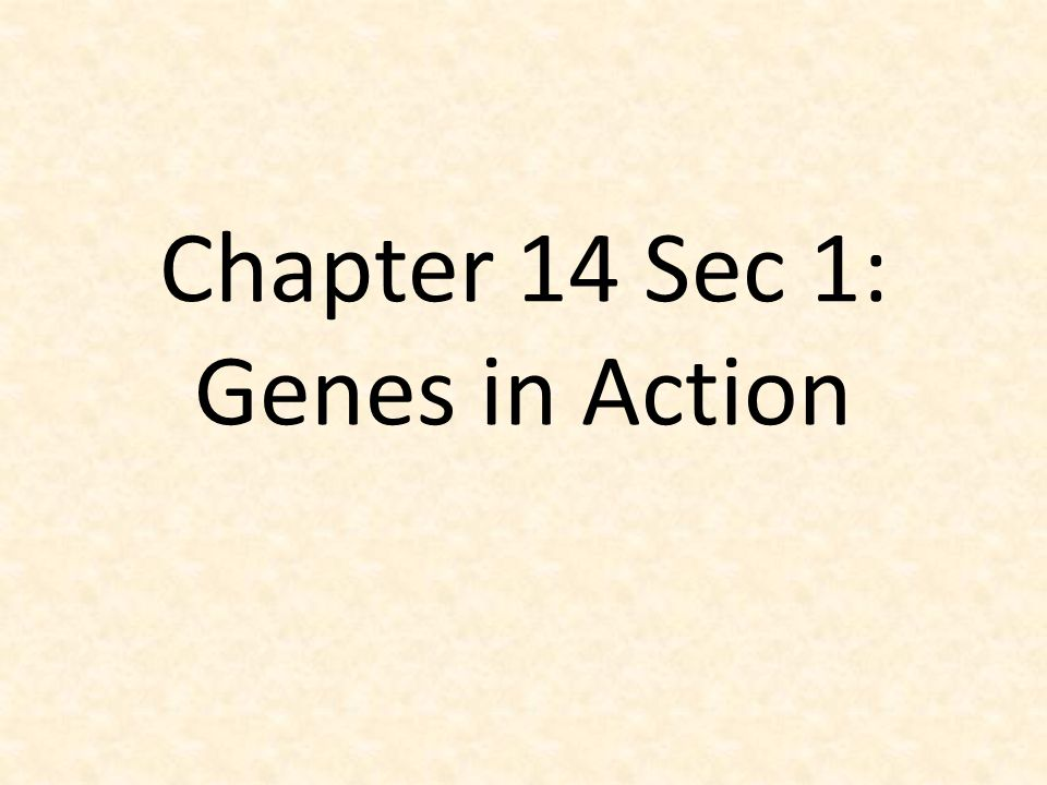 Chapter 14 Sec 1: Genes in Action - ppt video online download