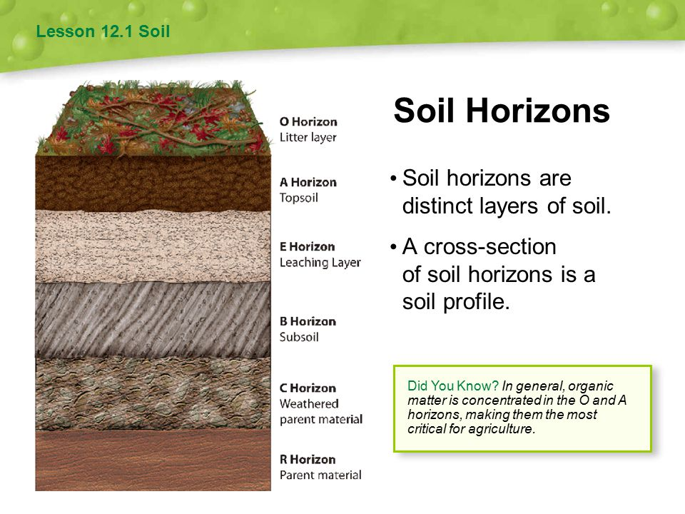 Soil and agriculture 12 chapter ppt video online download for Soil characteristics definition