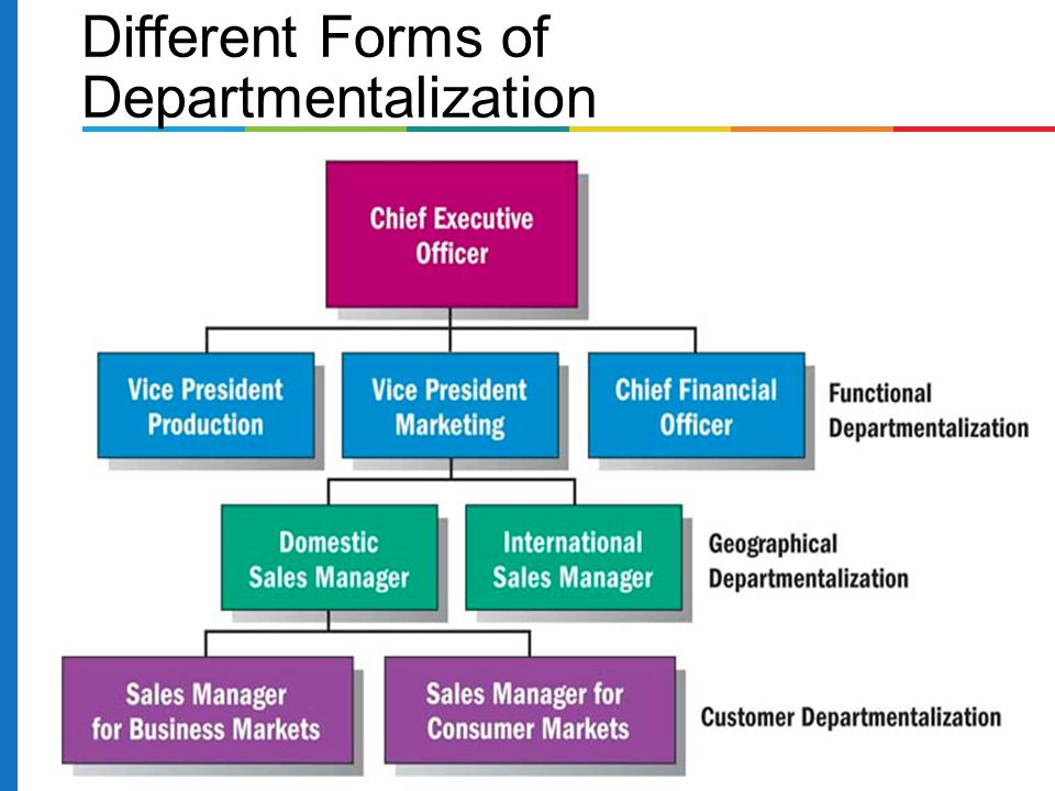 Different Forms of Departmentalization