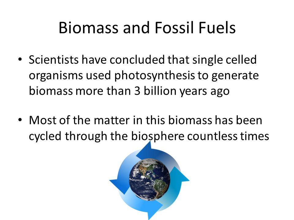 Biomass and Fossil Fuels