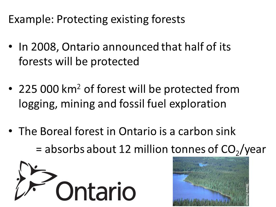 Example: Protecting existing forests