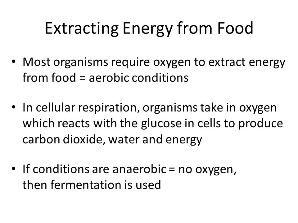 Extracting Energy from Food