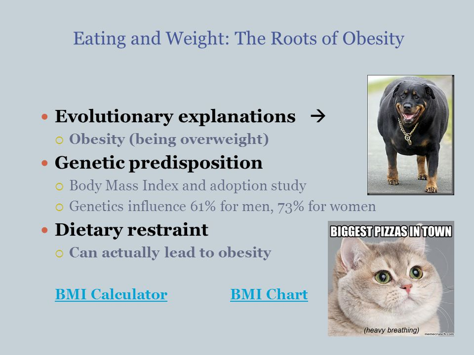 dietary restraint theory Pressures to lose weight and diet predicted all the psychosocial outcomes, whereas higher levels of (crf) predicted higher levels of body satisfaction and self-esteem and lower body mass indices (bmis), which predicted lower dietary restraint.