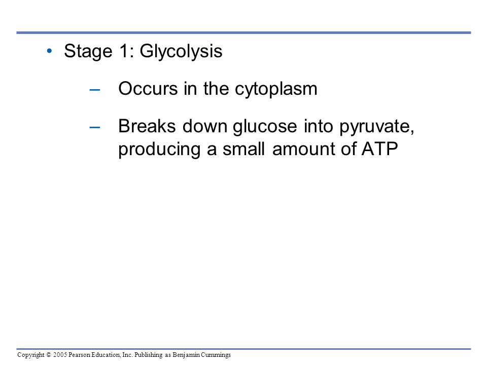 Stage 1: Glycolysis Occurs in the cytoplasm.