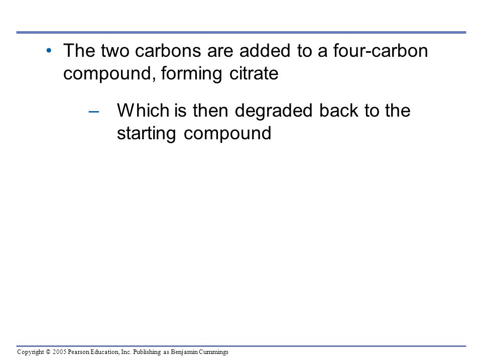 The two carbons are added to a four-carbon compound, forming citrate Which is then degraded back to the starting compound.