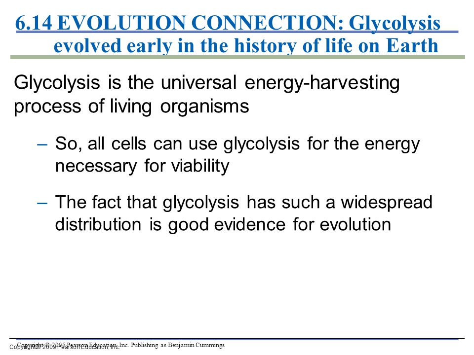 6.14 EVOLUTION CONNECTION: Glycolysis evolved early in the history of life on Earth