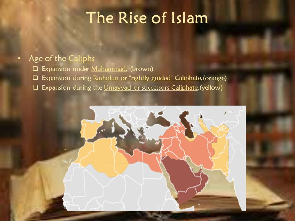 the rightly guided caliphs of islam
