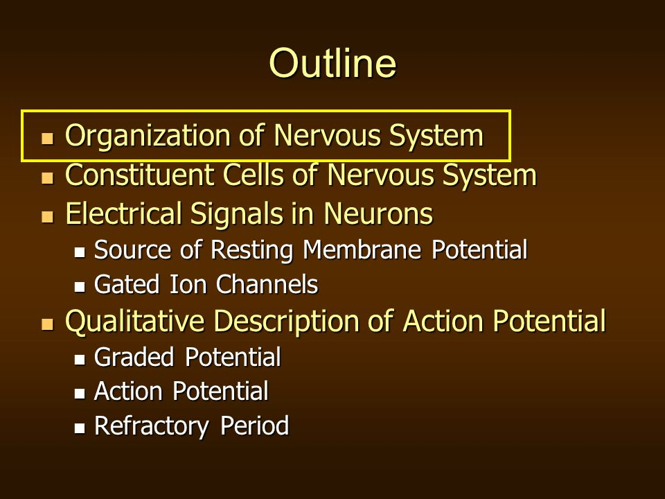 nervous system i ion channels Human physiology/the nervous system from wikibooks the downswing is caused by the closing of sodium ion channels and the opening of potassium ion channels.