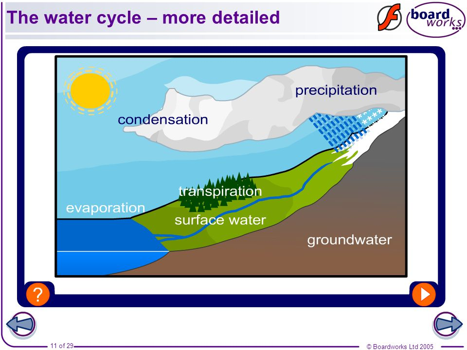 The water cycle – more detailed