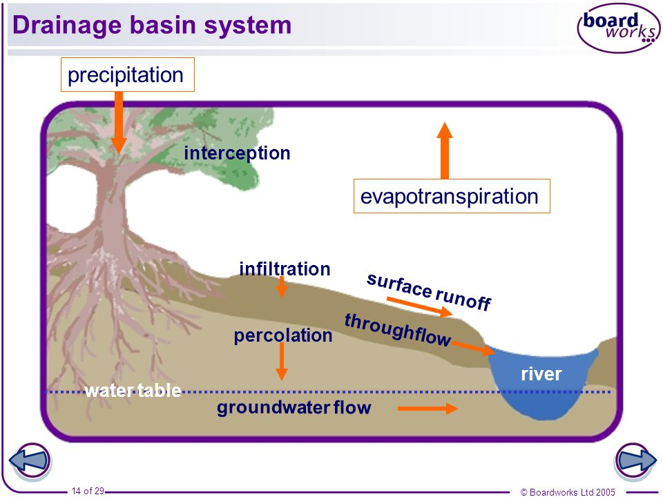 Drainage basin system precipitation evapotranspiration interception