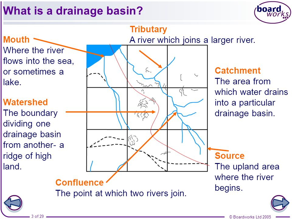 What is a drainage basin